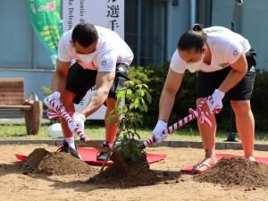 Judô brasileiro finca raízes em Hamamatsu em cerimônia simbólica de plantio de um ipê
